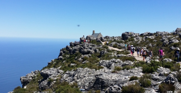 Promenade au sommet de Table Mountain